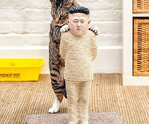 Kim-Jong-Un-cat-scratching-post